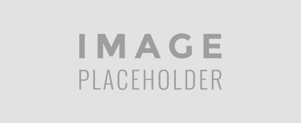 icon-portfolio